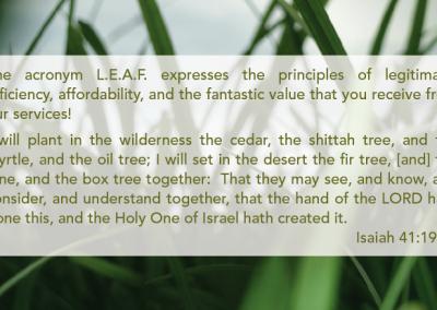 Leaf BC SD2